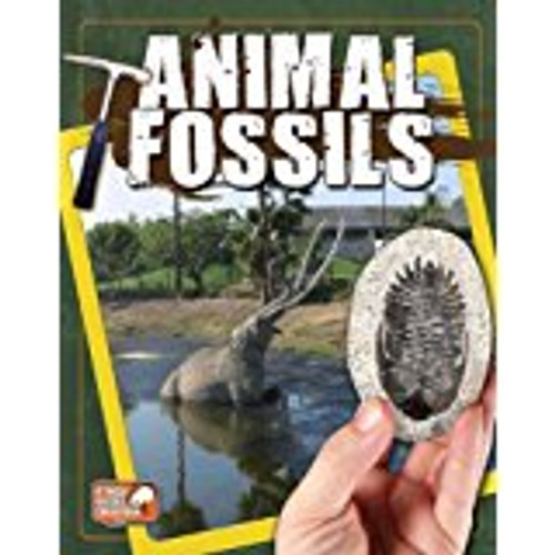 <p>Perfect for the budding paleontologist, this book brings to life animals that lived long ago. With clear text and engaging questions, a full range of fossils from microscopic insects to gigantic prehistoric mammals is examined. Students are encouraged to discuss the idea of living fossils and examine how fossilized animals have adapted into life forms still present today.</p>