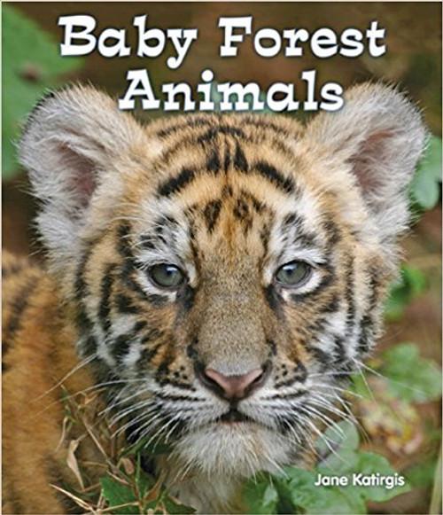 Baby Forest Animals by Jane Kartigis