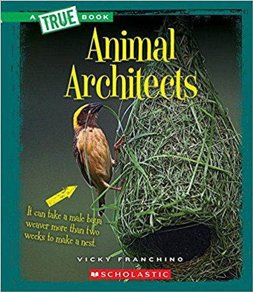 Animal Architects by Vicky Franchino