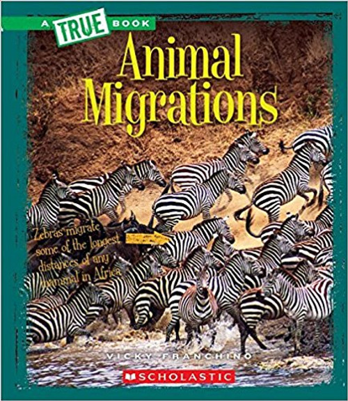 Animals Migrations by Vicky Franchino