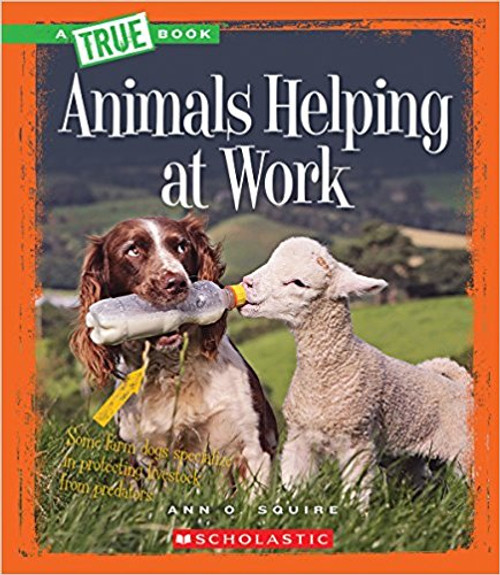 Animals Helping at Work by Ann O Squire