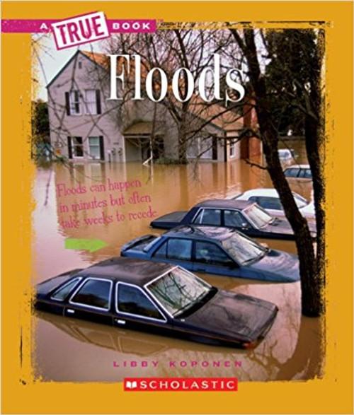 Floods by Libby Koponen