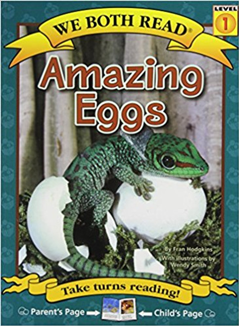 Amazing Eggs by Fran Hadgkins