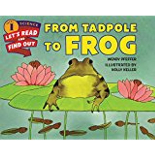 <p>Describes the year-long metamorphosis from tadpole to frog.</p>