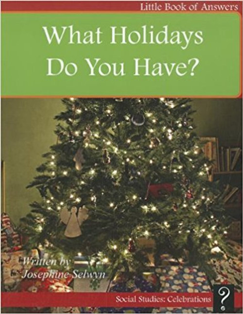 What Holidays Do You Have? by Josephine Selwyn