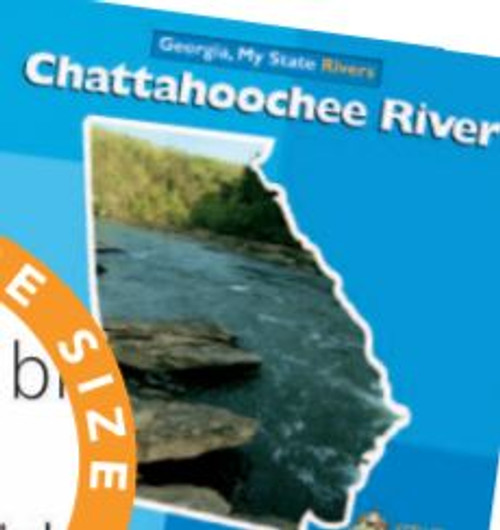 Chattahoochee River by Diane Carr
