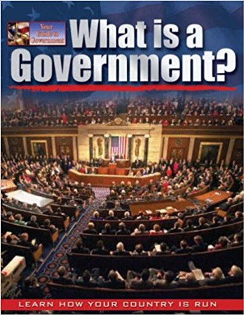 What is a government? by Baron Bedesky