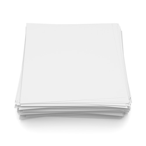 Filler Paper (100 Sheets, pre-punched) $14.95