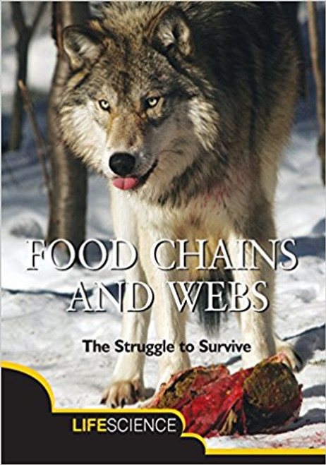 Discusses the food chain and how it includes a description of terms like energy, producers, consumers, decomposers and how it all fits together