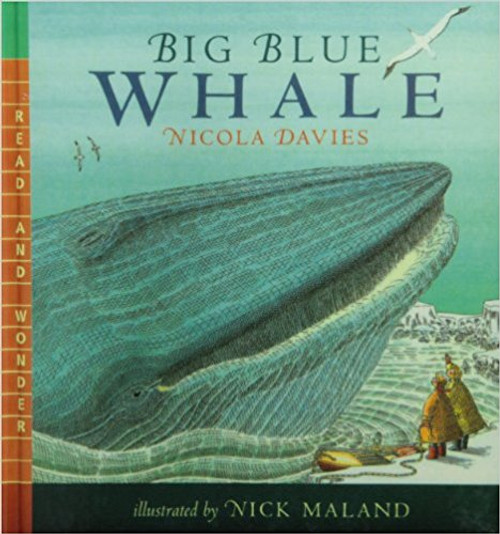 Big Blue Whale (Read Listen & Wonder) with CD by Nicola Davies