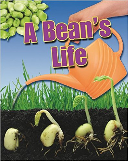A Bean's Life by Angela Roytson