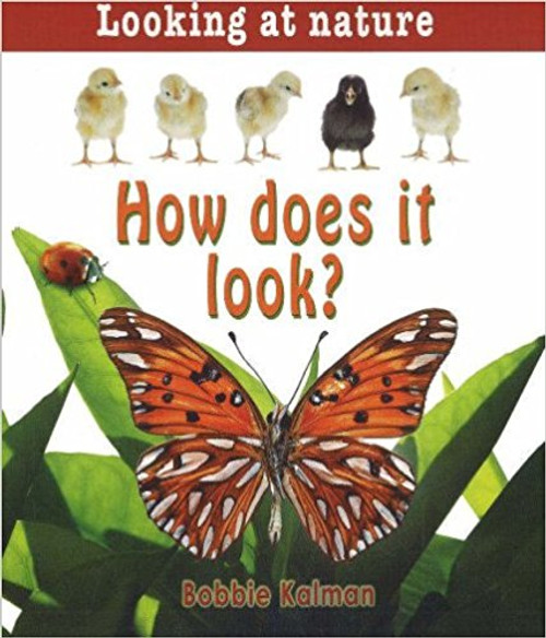 How Does It Look? by Bobbie Kalman