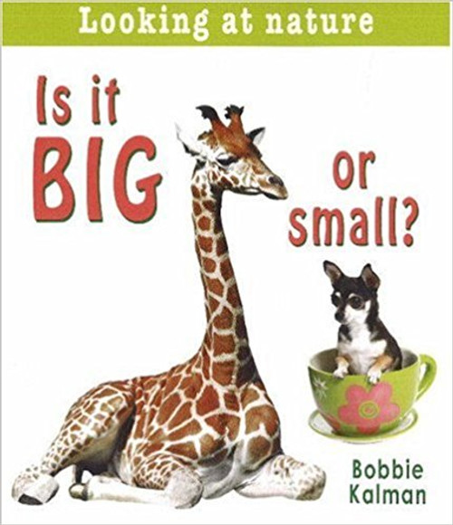 Is It Big or Small? by Bobbie Kalman