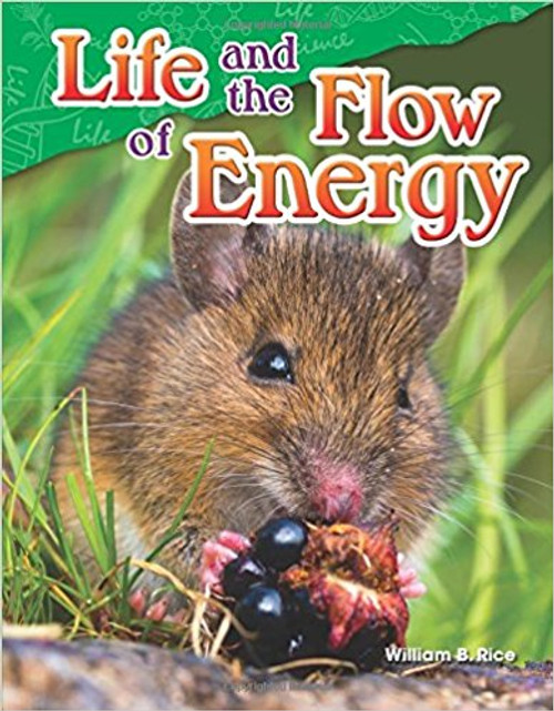 Life and the Flow of Energy by William Rice