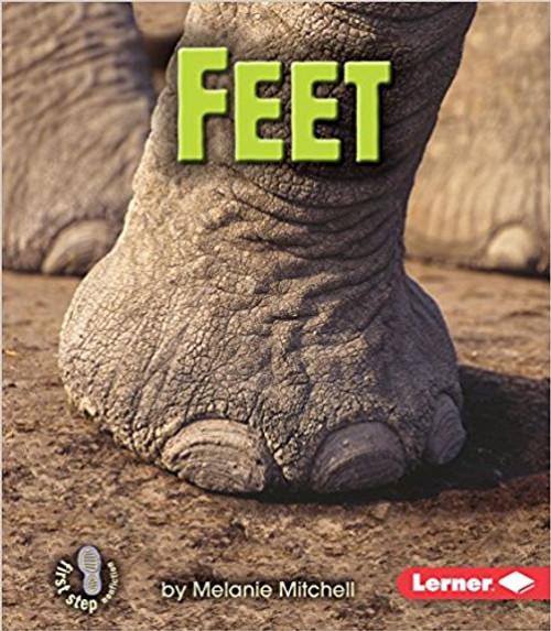 Feet by Melanie Mitchell