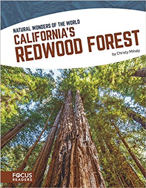 California's Redwood Forest by Christy Mihaly