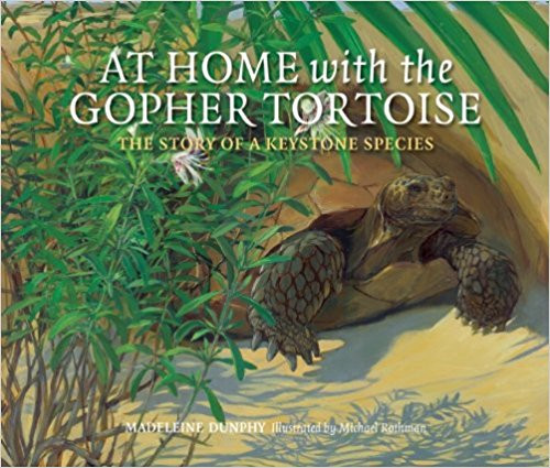 At Home with the Gopher Tortoise: The Story of a Keystone Species by Madeleine Dunphy