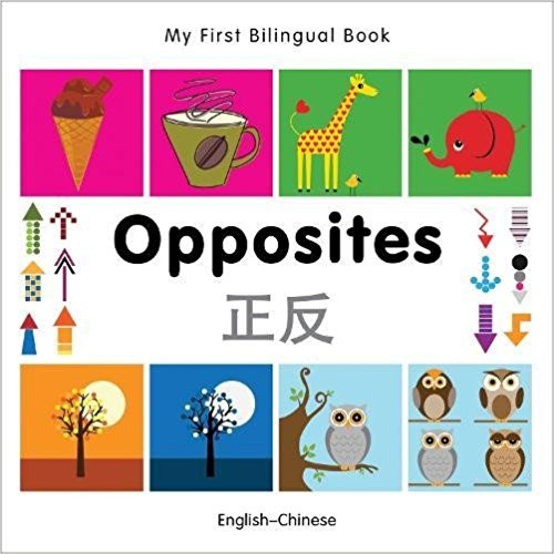 Opposites by Millet Publishing