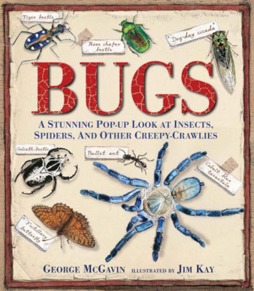 Bugs: A Stunning Pop-Up Lok at Insects, Spiders, and Other Creepy-Crawlies by George McGavin