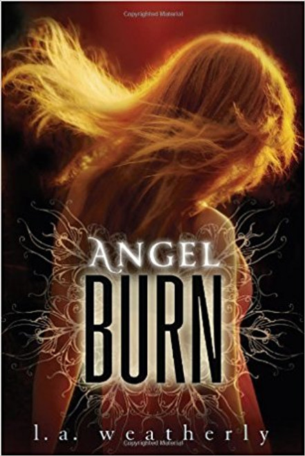 The first book in an action-paced romantic trilogy. In a world where angels are fierce stalkers whose irresistible force allows them to feed off humans and drain them of their vitality, a ruthless teenaged assassin of angels falls in love with a half-angel half-human girl, with devastating consequences.