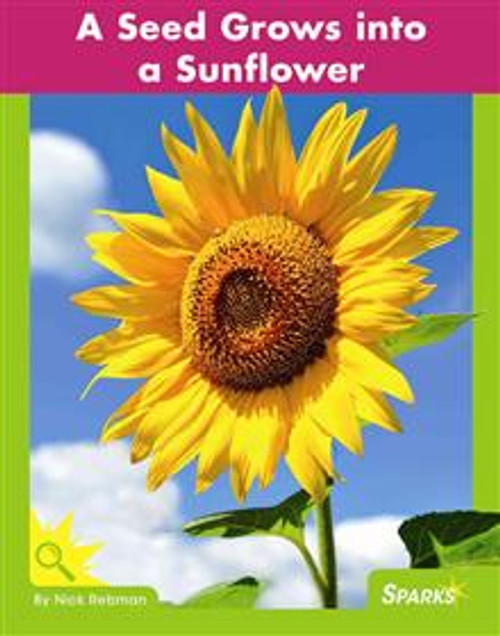 <p>Presents information about the life cycle of sunflowers to beginning readers, including high-impact photos, close photo-to-text match, a picture glossary, and a comprehension question. F&amp;P Text Level Gradient: Level D.</p>