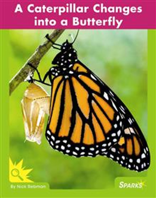 <p>Presents information about the life cycle of butterflies to beginning readers, including high-impact photos, close photo-to-text match, a picture glossary, and a comprehension question. F&amp;P Text Level Gradient: Level D.</p>