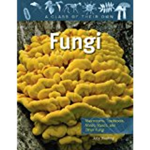 <p>features an examination of the four major groups: yeasts, toadstools, chytrids, and bread molds. Key characteristics of fungi are highlighted, such as spore production, fungi's need to feed, and their use of long, branching cells known as hyphae to absorb nutrients from the environment.</p>