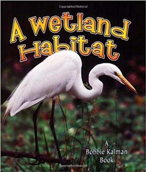 A Wetland Habitat by Bobbie Kalman