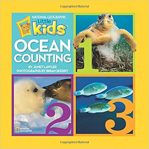 Presents young readers with a foundation for learning basic counting skills while discovering some magnificent ocean animals. Fact boxes in the back of the book include information about the animals' homes, sizes, diets, predators, and babies