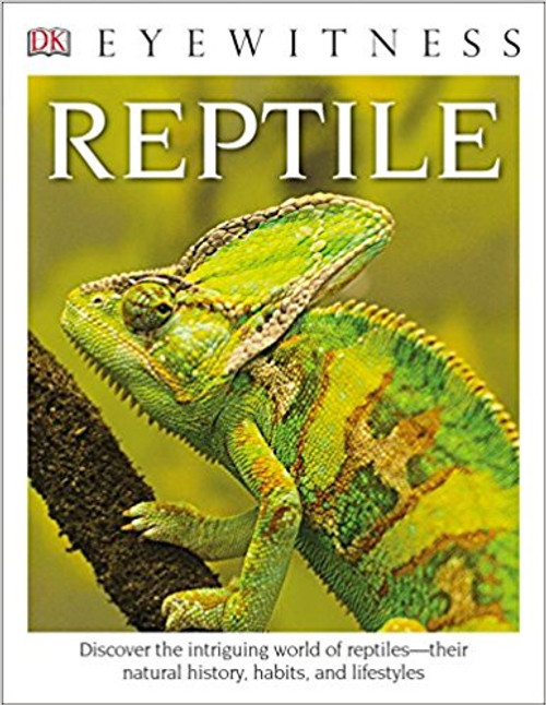 Reptile by DK