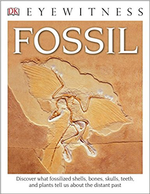 Fossil by DK