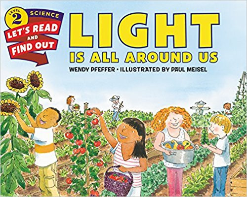 Light Is All Around Us by Wendy Pfeffer