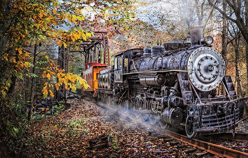 Train's Coming 1000-Piece Jigsaw Puzzle by SunsOut
