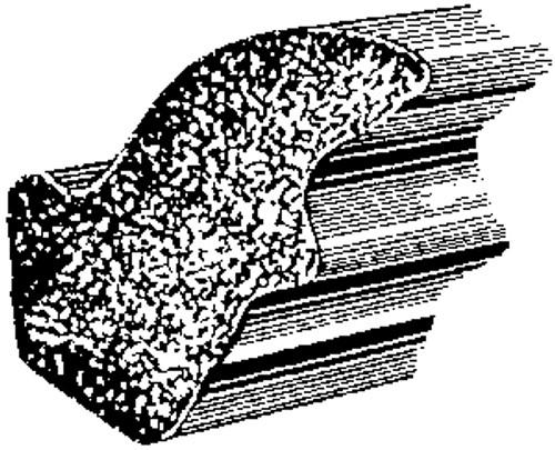 GM 1956 - On Trunk Lid  Sponge Rubber Weatherstrip 50 Feet Per Box