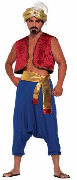 Blue Desert Prince Adult  Pants Aladdin Sultan Harem Genie Costume Accessory