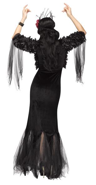 Sexy Raven Mistress Costume Womens Halloween Black Witch  Sorceress Fancy Dress
