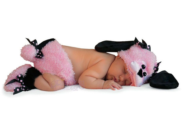 Princess Paradise Pinkie Poodle Baby Costume Newborn Girls Dog Outfit 0-3 months