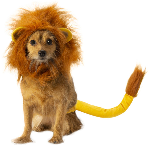 Disney The Lion King Simba Pet Costume Accessory Set Dog Mane Animal SM-MD