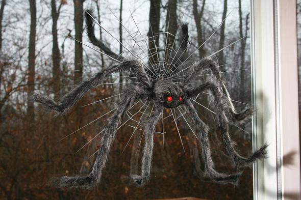 "30"" Spider Crasher Halloween Window Decoration Creepy Black Furry Tarantula"
