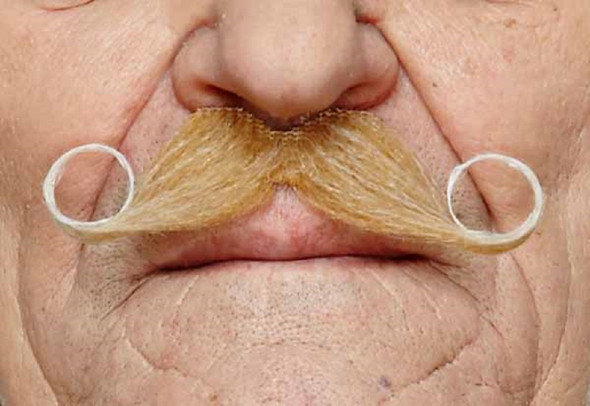 Blonde White Handlebar Mustache Curly Poirot Self Adhesive Facial Hair Mens