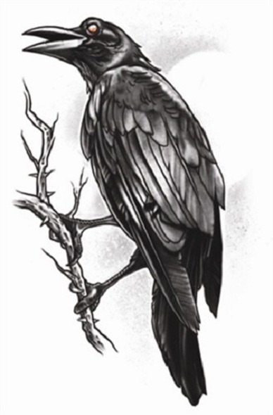 Tinsley Transfers The Raven Goth Temporary Tattoo Halloween FX Makeup