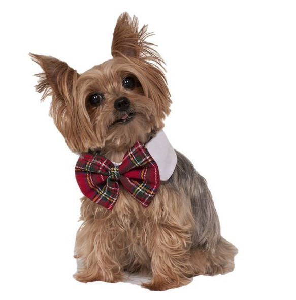 Christmas Dog Bow & Collar Red Plaid Bowtie Festive Holiday Costume Accessory