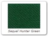 Sequel Hunter Green