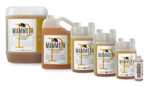 The Mammoth Microbes Mammoth P family line up