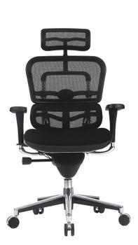 Ergo High Back Fabric Seat/Mesh Back