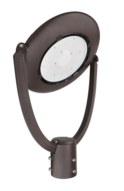 Adjustable Decorative LED Area Light