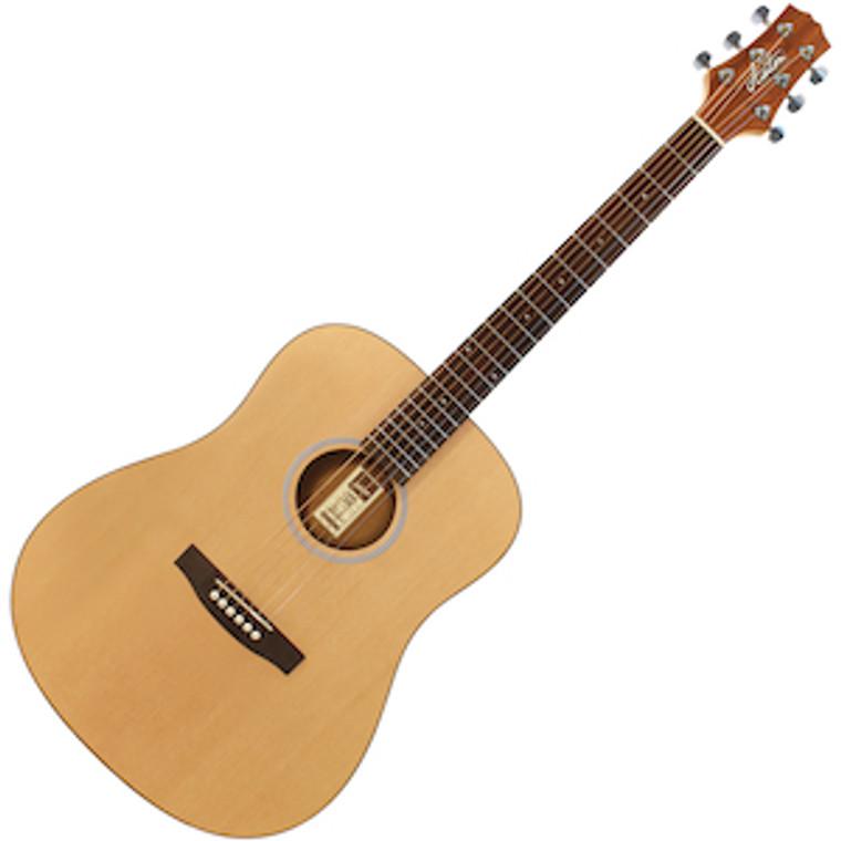 Ashton D20 Acoustic Guitar