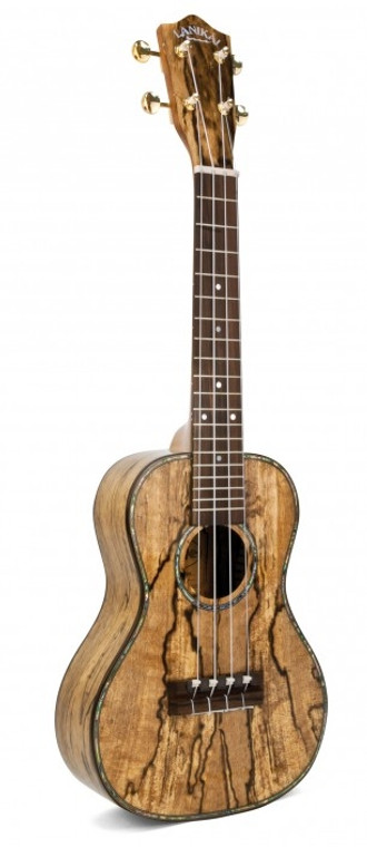 Shop online now for Lanikai LUSMCS Spalted Mango Concert Ukulele. Best Prices on Lanikai in Australia at Guitar World.