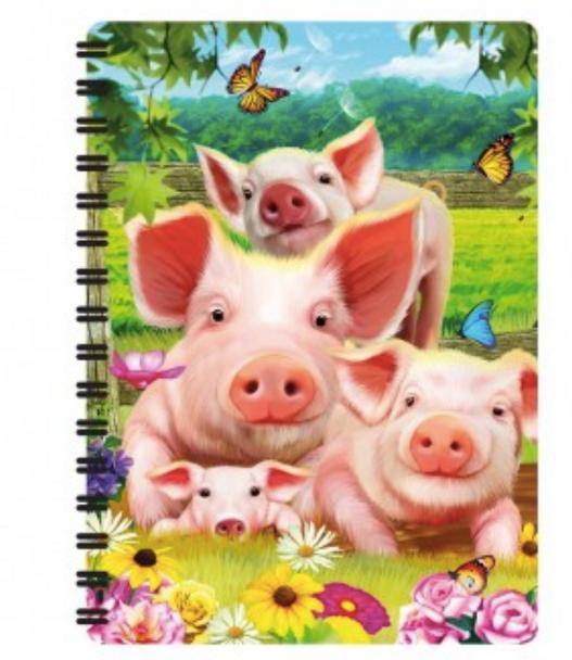 3D LiveLife Jotter - Pig Pen