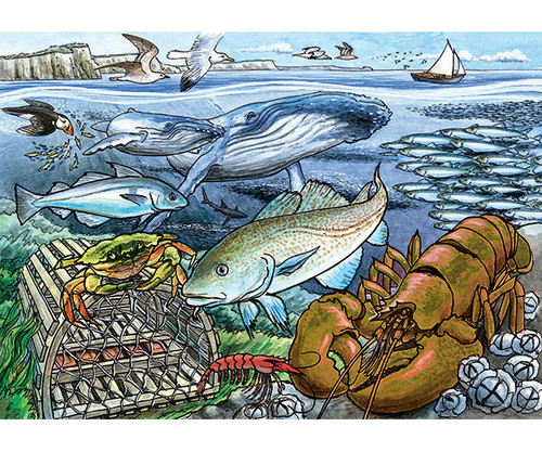 OUTSET MEDIA GAMES - Life in the Atlantic Ocean - 35 Piece Tray Jigsaw Puzzle (OM58804) 625012588041